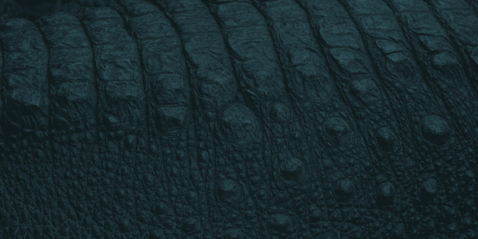 Background_02_DarkTeal
